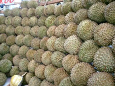 King of the Fruits – Durian