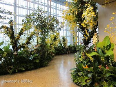 Garden and Flower Show 2010 (1)