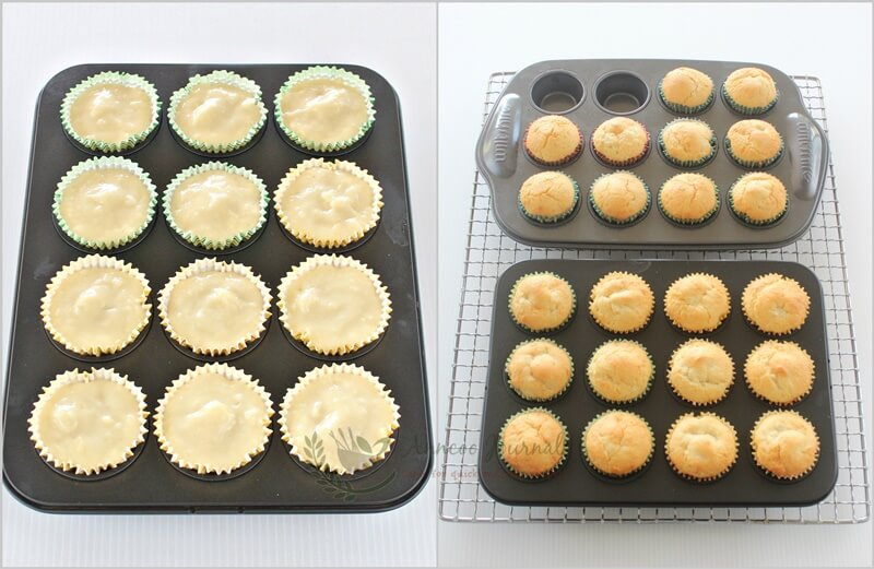 durian muffin 1d