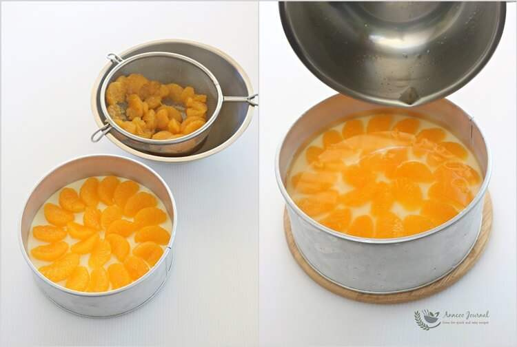 no-bake-orange-cheesecake-1dd
